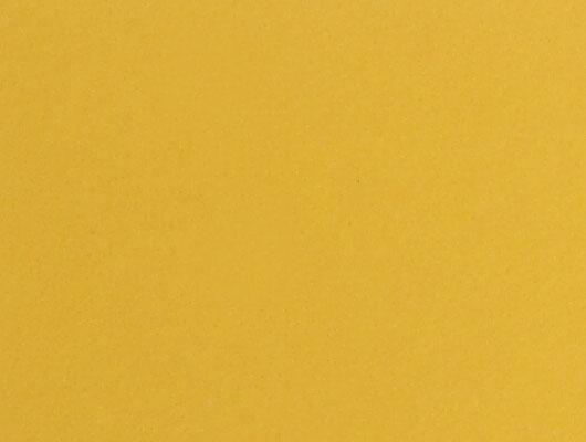 jaune_F7940