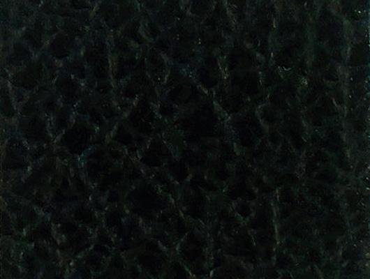 cuir_noir