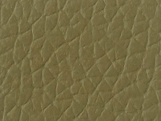 cuir_taupe
